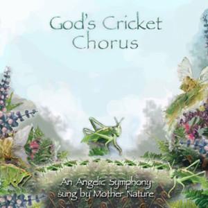 Angelical coro de grillos, por Jim Wilson.